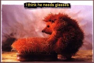 He Need Glasses