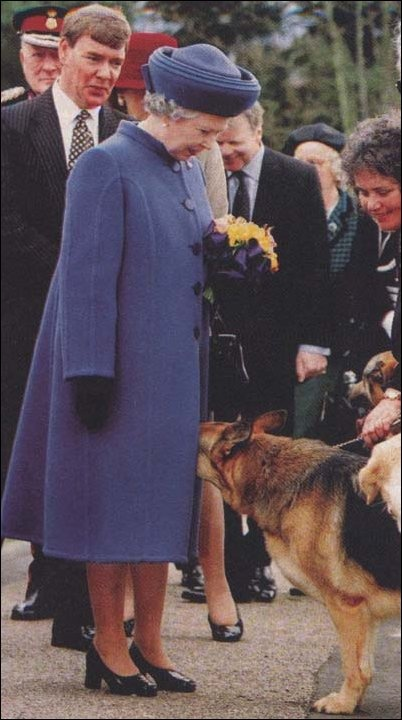 dog visits queen